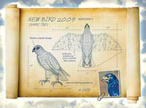 New-Bird-Design