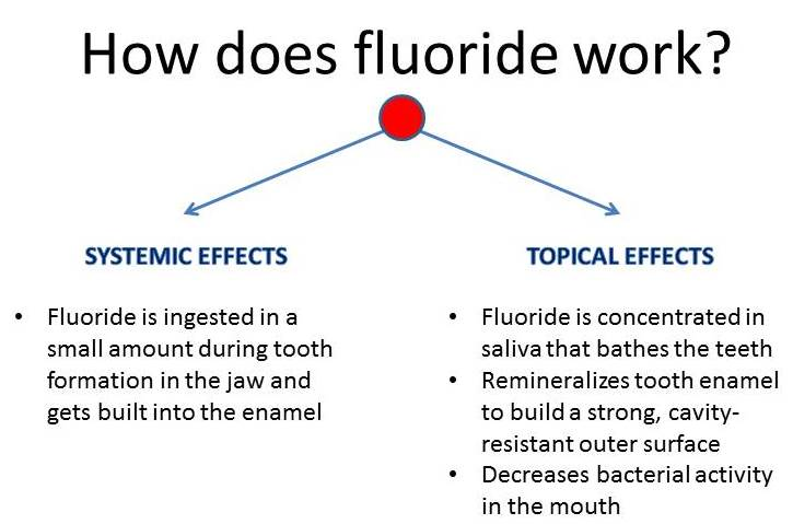 Experts speak out on fluoridation  Open Parachute