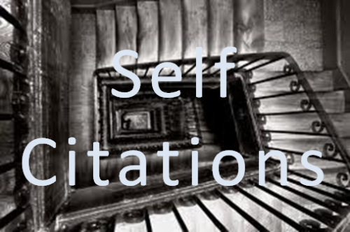 self-citations-is-it-worth-doing-them