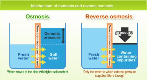 Filtering by reverse osmosis