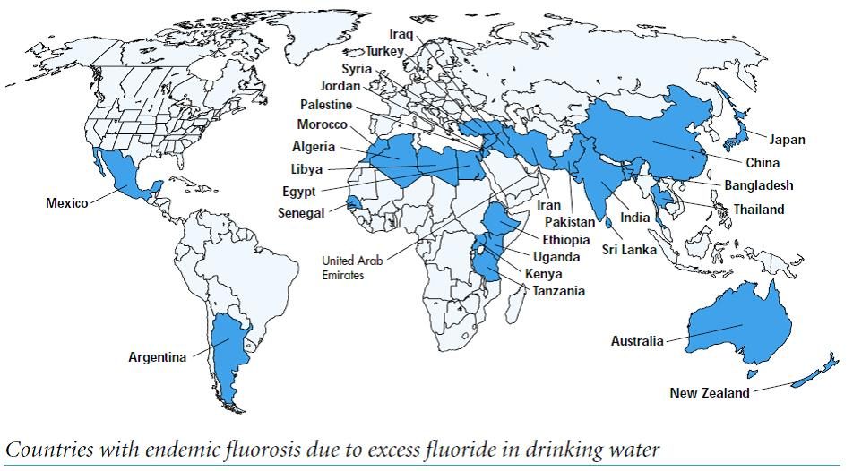 Anti Fluoride Claims Often Not Relevant To New Zealand Open Parachute
